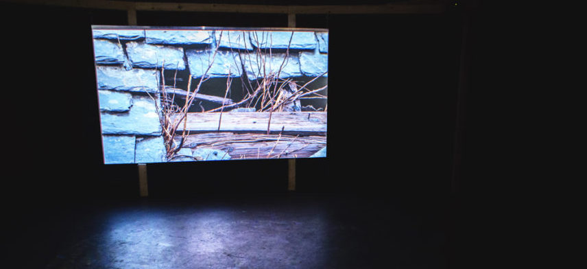 frame audio visual documentary same hillside cryptic CCA glasgow exibition landscape